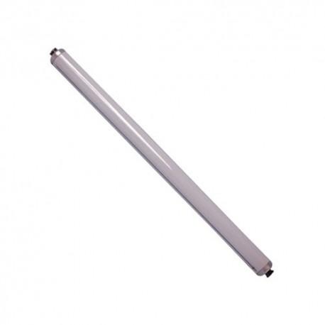 Tube fluo r18s 38x600 20w bi tls phil