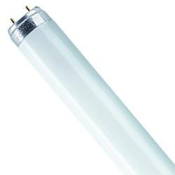 Tube fluo 0m90 30w biolux965 bl 52110r