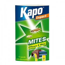 PAPIER ACCORDEON MITES  1 BANDE KAPO