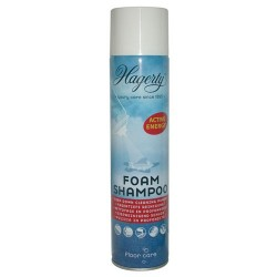 SHAMPOING HAGERTY AEROSOL 600ML